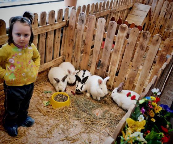 Экскурсия в контактный зоопарк для воспитанников социального приюта г Донецк1588933060